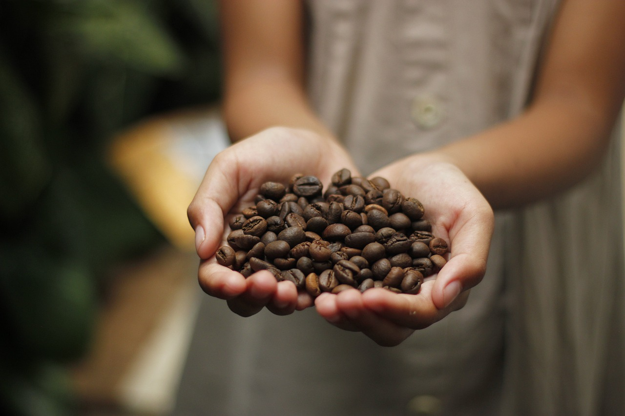 Frisch geröstete äthiopische Kaffeebohnen
